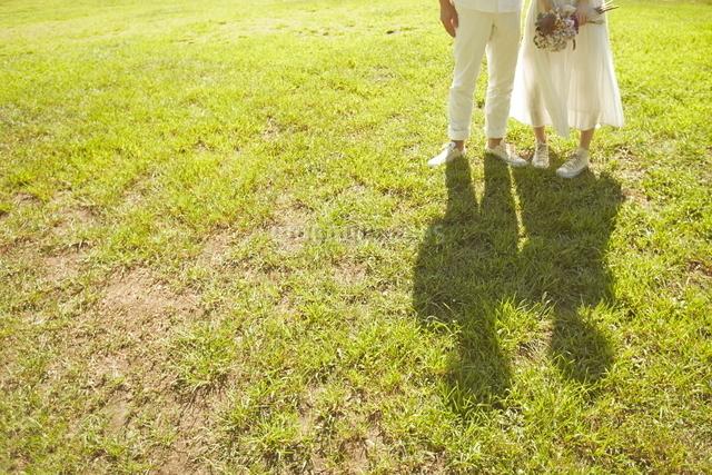 芝生の上に立っている新郎新婦の写真素材 [FYI01637586]