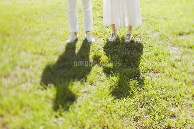 芝生の上に立っている新郎新婦の写真素材 [FYI01637706]