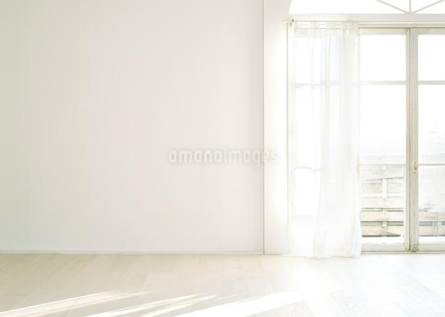 窓辺の白い壁と床の写真素材 [FYI01637762]