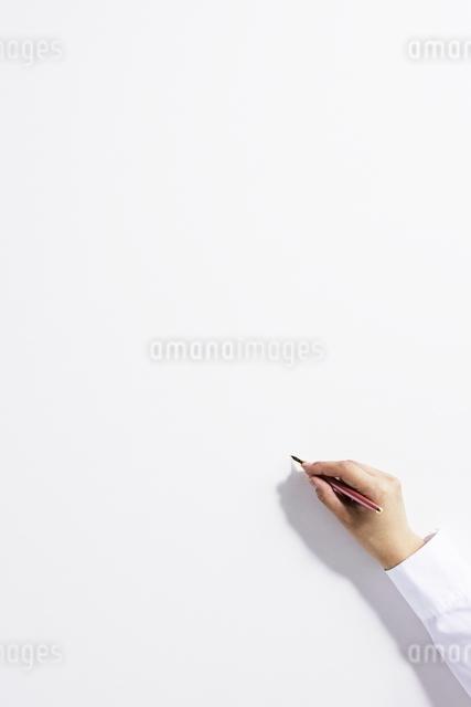 手の写真素材 [FYI01637915]