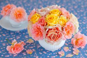 オレンジとイエローのバラに青の背景の写真素材 [FYI01638050]