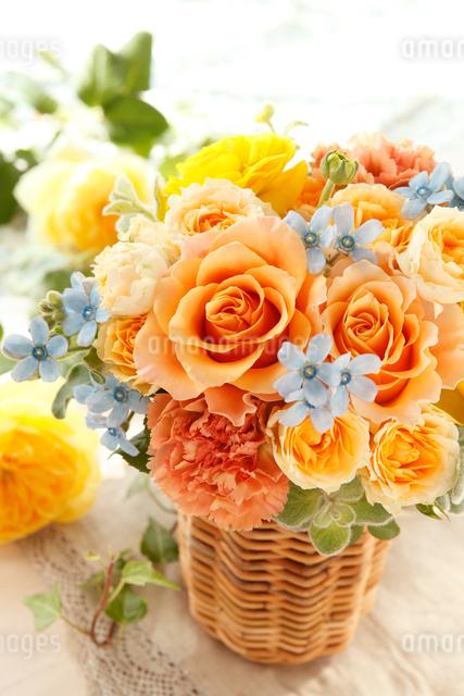 オレンジとイエローとブルーの写真素材 [FYI01638060]