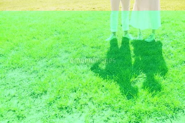 芝生の上に立っている新郎新婦の写真素材 [FYI01638137]