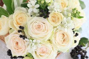 白いバラと木の実の写真素材 [FYI01638273]