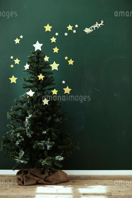 黒板風の壁の前にあるクリスマスツリーの写真素材 [FYI01638294]
