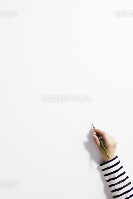 手の写真素材 [FYI01638377]
