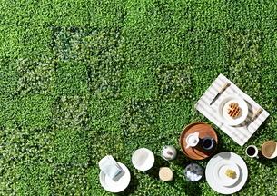 芝生でピクニックの写真素材 [FYI01638572]