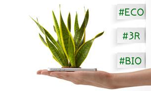 スマートフォンから生える植物を持つ女性の手の写真素材 [FYI01638618]