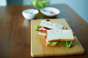 サンドイッチの写真素材 [FYI01638764]