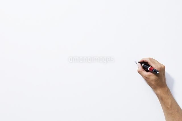 手の写真素材 [FYI01638801]