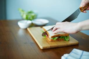 サンドイッチを作る女性の写真素材 [FYI01638935]