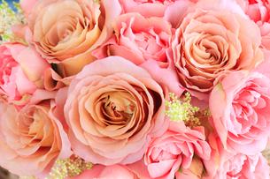 バラ ショコラトルとストロベリーパフェの写真素材 [FYI01638952]