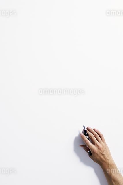 手の写真素材 [FYI01639187]