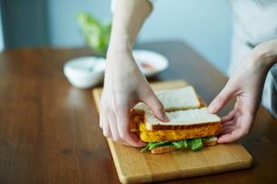 サンドイッチを作る女性の写真素材 [FYI01639204]