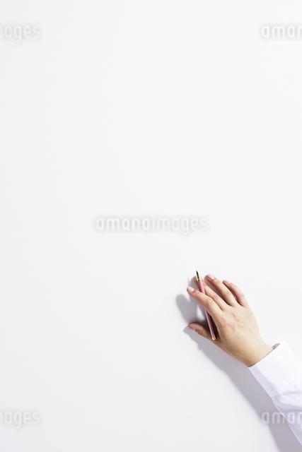 手の写真素材 [FYI01639278]