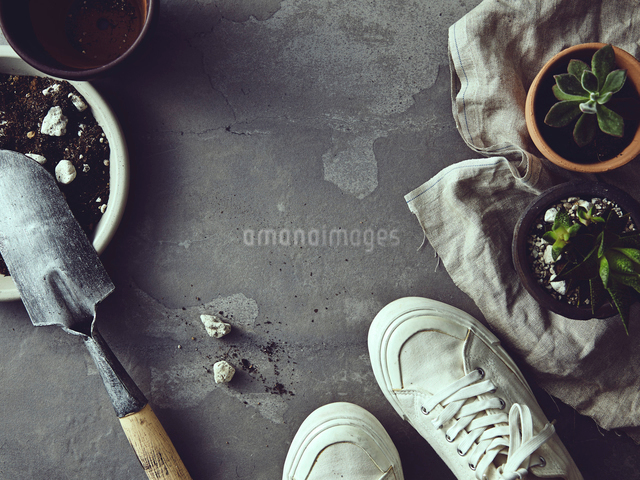 グレータイルの上でガーデニングをする風景の写真素材 [FYI01639352]