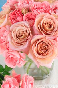 バラ ショコラトルとストロベリーパフェの写真素材 [FYI01639393]