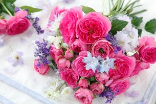 ピンクのプチブーケの写真素材 [FYI01639431]