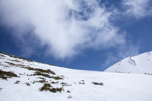 雪が積もった御嶽山濁河登山道の写真素材 [FYI01639813]
