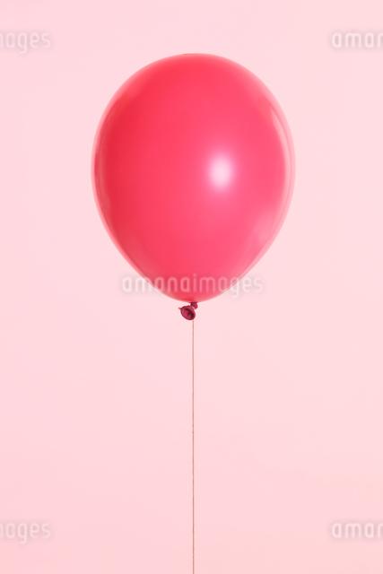 ピンク系の風船の写真素材 [FYI01640253]