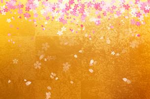金屏風と桜のイラスト素材 [FYI01640939]