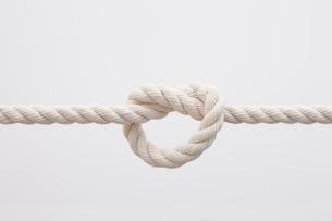 ロープの結び目の写真素材 [FYI01641610]