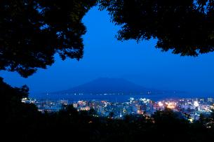 城山公園からの桜島の夜景の写真素材 [FYI01641646]