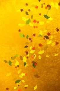 金屏風と紅葉の葉のイラスト素材 [FYI01641675]