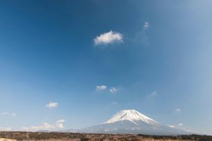 朝霧高原から見た富士山の写真素材 [FYI01641970]