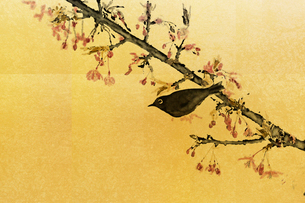河津桜とメジロ(フォトイラスト)のイラスト素材 [FYI01642068]