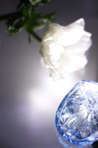 白いフレッシュアネモネとブルーの香水ビンに当たる光の写真素材 [FYI01643317]