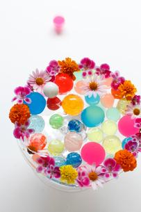 まわりに花を活けたガラスの器に入ったカラフルなボール(生花)の写真素材 [FYI01643339]