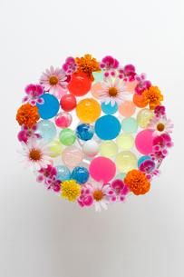 まわりに花を活けたガラスの器に入ったカラフルなボール(生花)の写真素材 [FYI01643396]