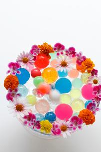 まわりに花を活けたガラスの器に入ったカラフルなボール(生花)の写真素材 [FYI01643410]
