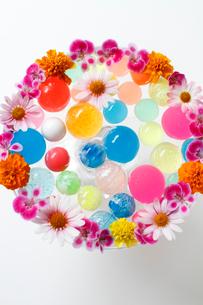 まわりに花を活けたガラスの器に入ったカラフルなボール(生花)の写真素材 [FYI01643412]