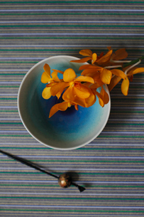 青い和皿に乗せたランの花と黒いかんざしの写真素材 [FYI01643432]