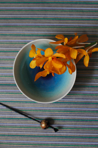 青い和皿に乗せたランの花と黒いかんざしの写真素材 [FYI01643434]