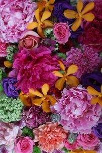 いろいろな花の敷き詰めの写真素材 [FYI01643441]