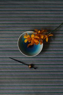青い和皿に乗せたランの花と黒いかんざしの写真素材 [FYI01643446]