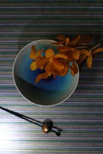 青い和皿に乗せたランの花と黒いかんざしの写真素材 [FYI01643447]