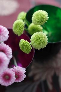 内側に色の付いた器にいけた小菊の花の写真素材 [FYI01643490]