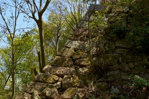 八幡山城跡の写真素材 [FYI01643921]