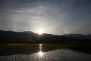 夕日落ちる田んぼの写真素材 [FYI01644177]