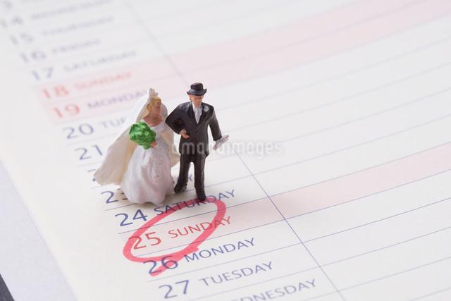 結婚式のスケジュール帳の写真素材 [FYI01644219]