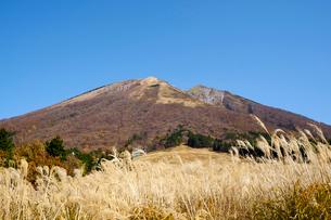 桝水原より望む大山の写真素材 [FYI01644380]