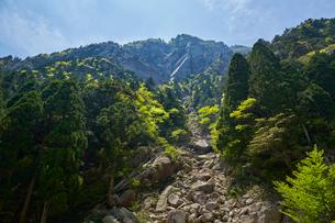 御在所岳登山道からの眺めの写真素材 [FYI01644507]