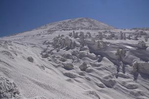 八甲田、大岳中腹より山頂を望むの写真素材 [FYI01644732]