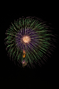 常総きぬ川花火大会 昇小花八重芯変化先銀点滅の写真素材 [FYI01645035]
