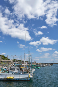 大王崎の港の写真素材 [FYI01645424]