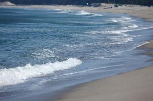 弓ヶ浜の写真素材 [FYI01645638]